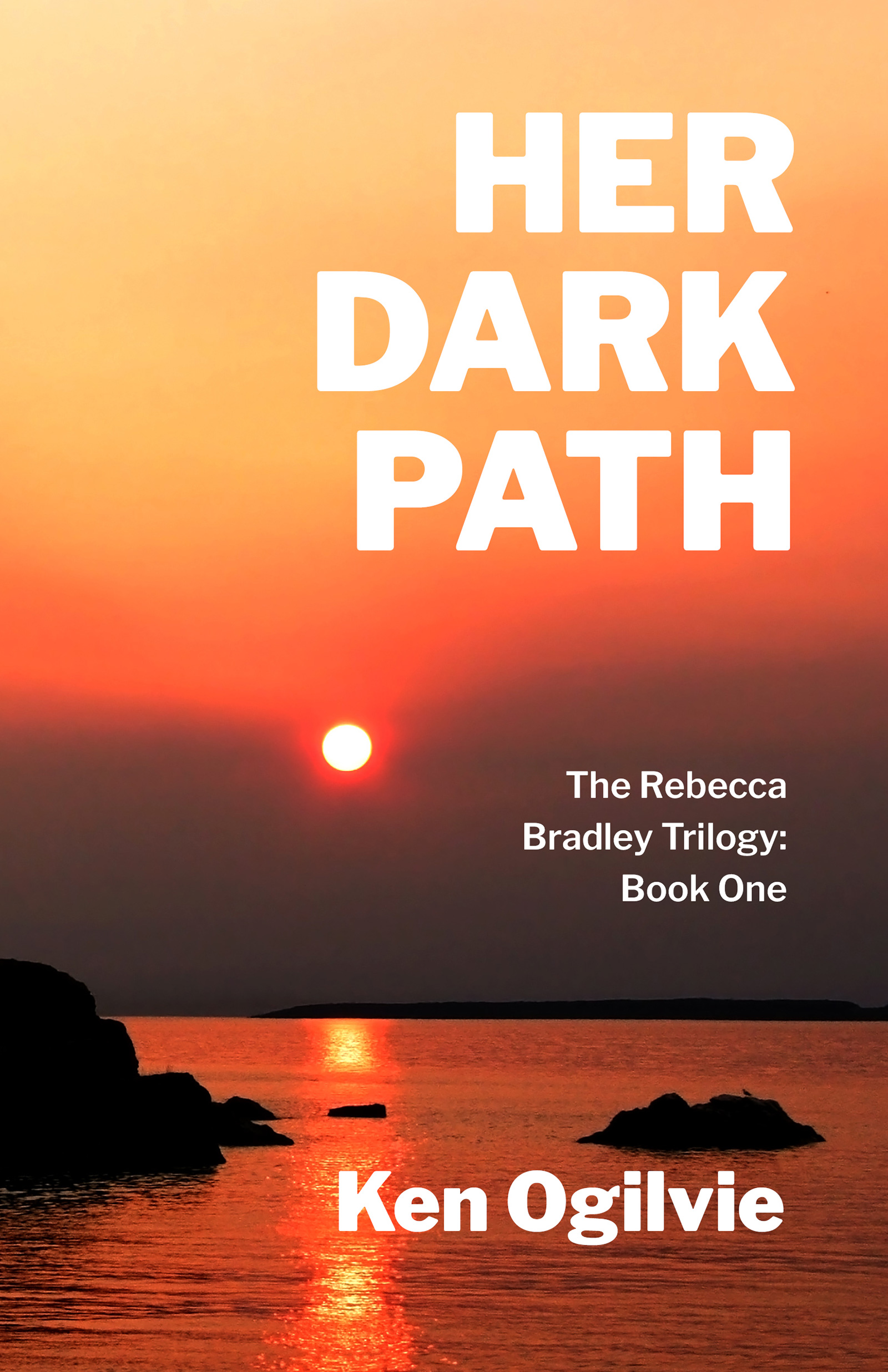 Her Dark Path book cover image